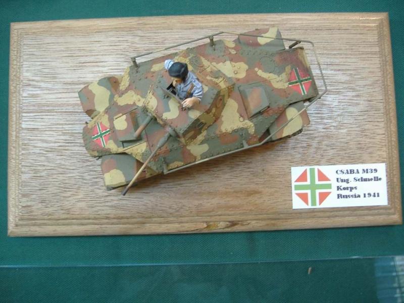 exposition Palavas-les-flots Dscf1925