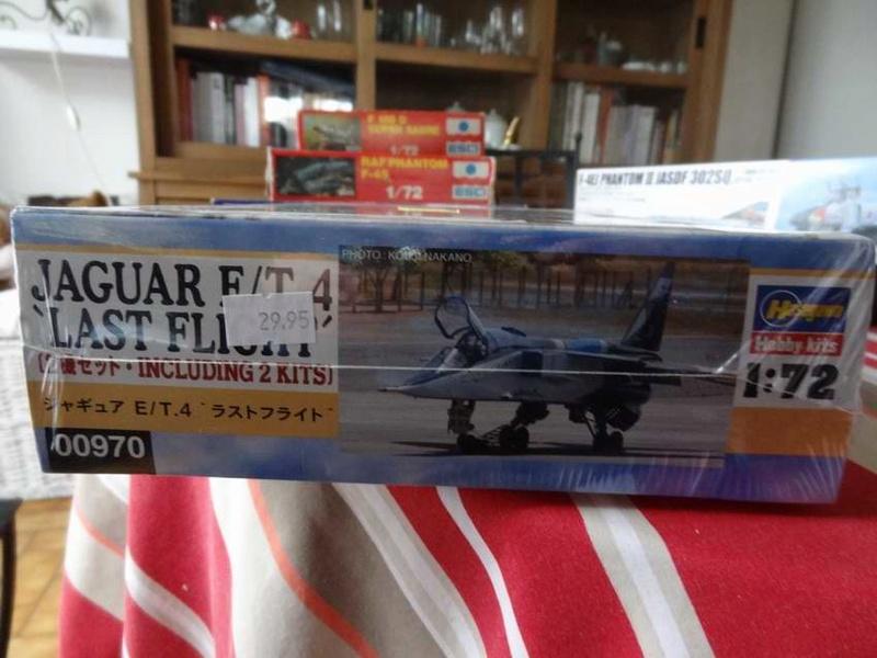 bronco 8.8cm flak , F-4EJ phantom , hasegawa jaguar combo TERMINE !!! Hasega12