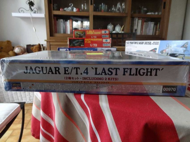 bronco 8.8cm flak , F-4EJ phantom , hasegawa jaguar combo TERMINE !!! Hasega13