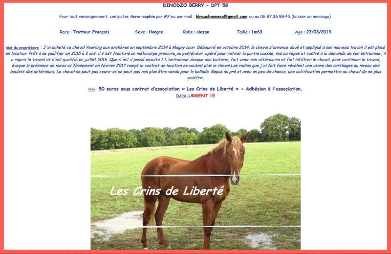 Dpt 58 - 4 ans - DINODZO BERRY adopté par Céline - Page 2 Dinodz10