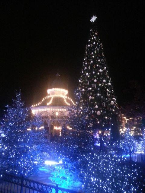 une journée magique à Disney en amoureux pour la saison de noel le 27 novembre - Page 13 Image111