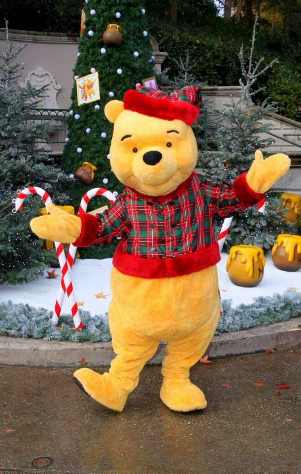 une journée magique à Disney en amoureux pour la saison de noel le 27 novembre - Page 2 Image_13
