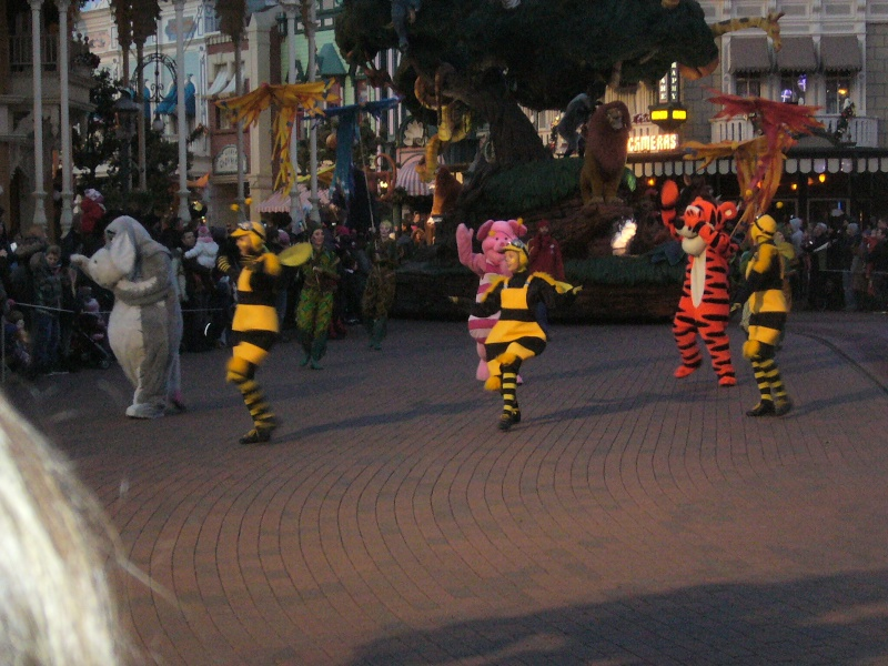 une journée magique à Disney en amoureux pour la saison de noel le 27 novembre - Page 12 P1020328