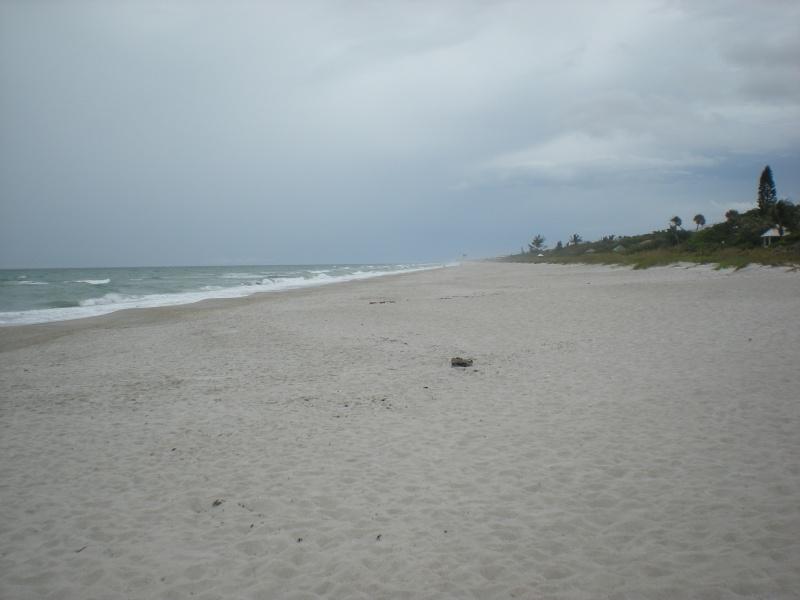Voyage en famille en Floride - juillet 2013 - Page 2 Dscn3418