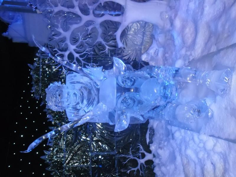 scuplture sur glaces disney bruges 2013 Sam_3913
