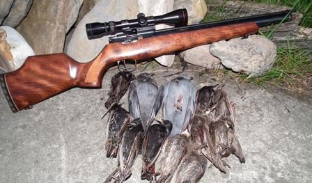 les carabines a air comprimé de calibre 5.5 et 4.5  Titan_10