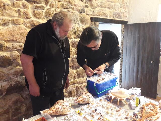 Bourse dans le château de Peufeilhoux à Vallon en Sully (03)- Les 13/14 Mai 2017 - Page 2 20170528