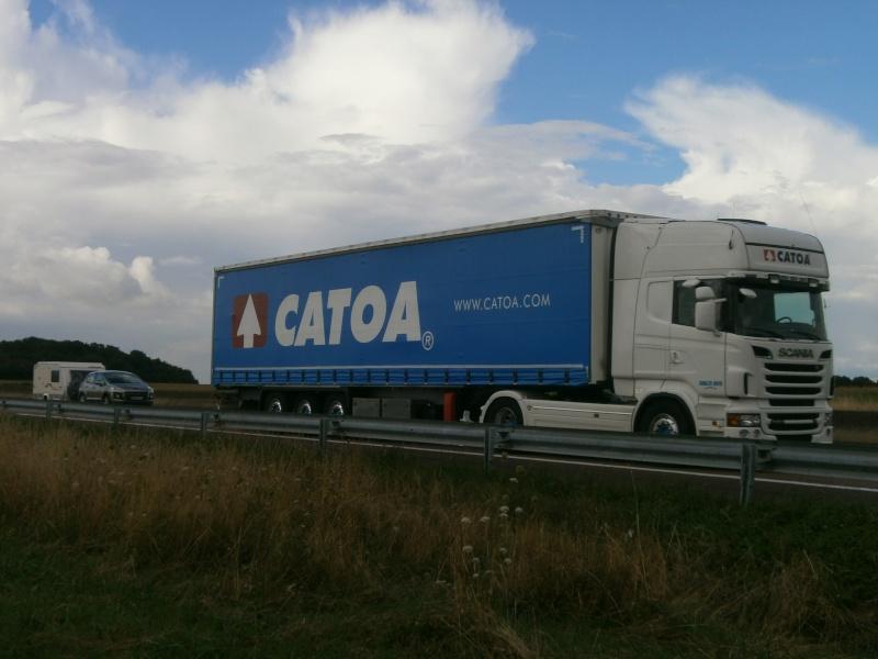 Catoa (Colloto) P8271877