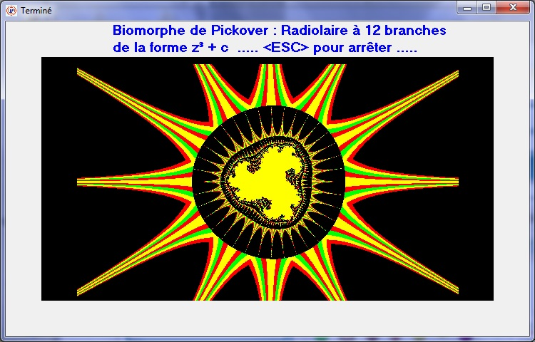 Biomorphes de PICKOVER 215