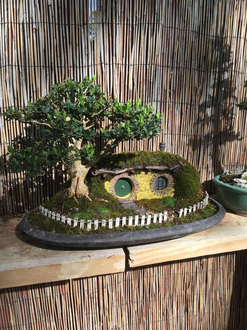 my take on the famous hobbit house bonsai Rsz_im10