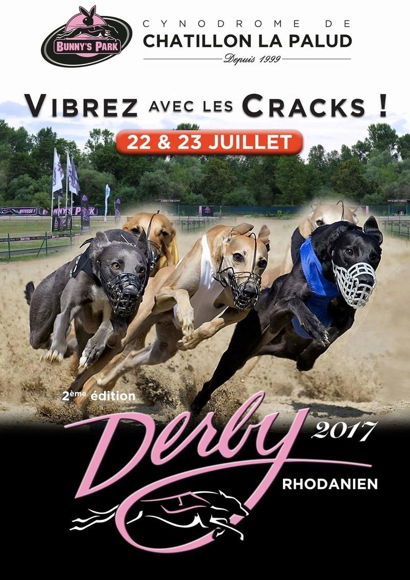 Courses lévrier Châtillon la palud (01 320 ) le 22 et 23 juillet 2017   Fb_img11