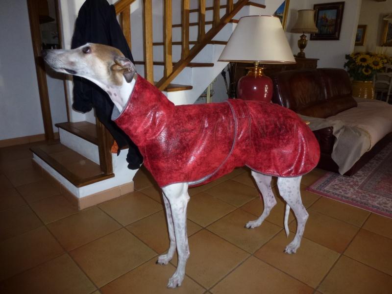Un beau manteau pour affronter l'hiver . Fjord_12