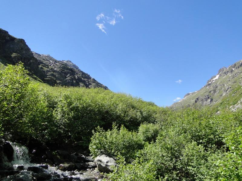 Le vallon d'Ambin Dsc04410