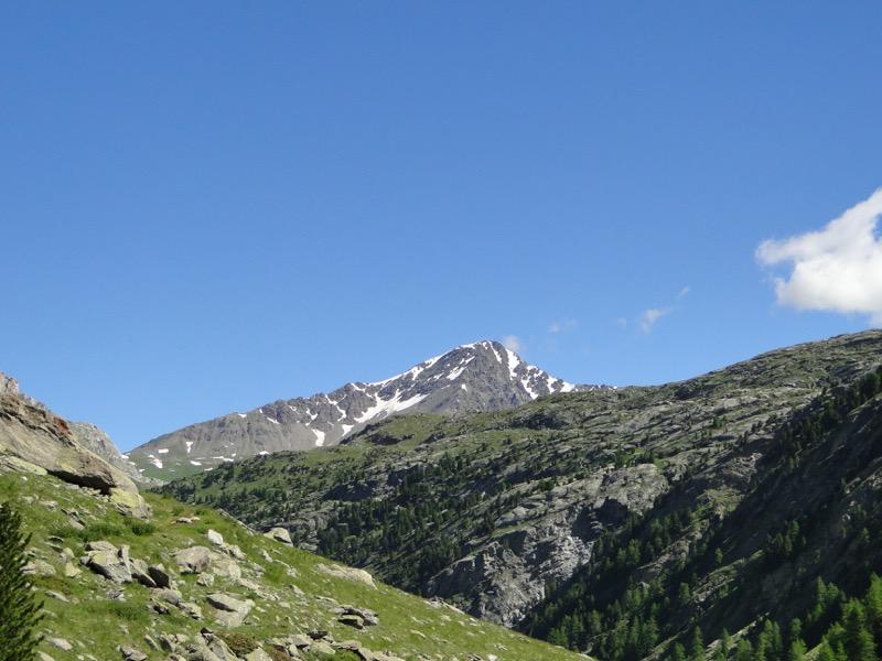 Le vallon d'Ambin Dsc04412