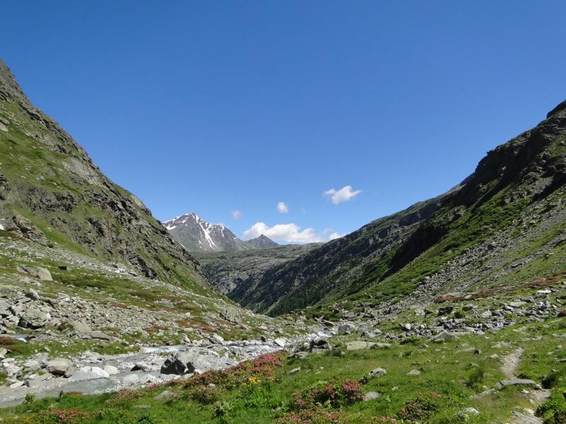 Le vallon d'Ambin Dsc04414
