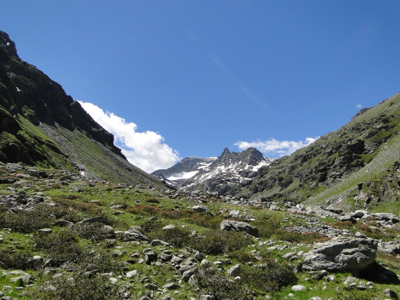 Le vallon d'Ambin Dsc04510