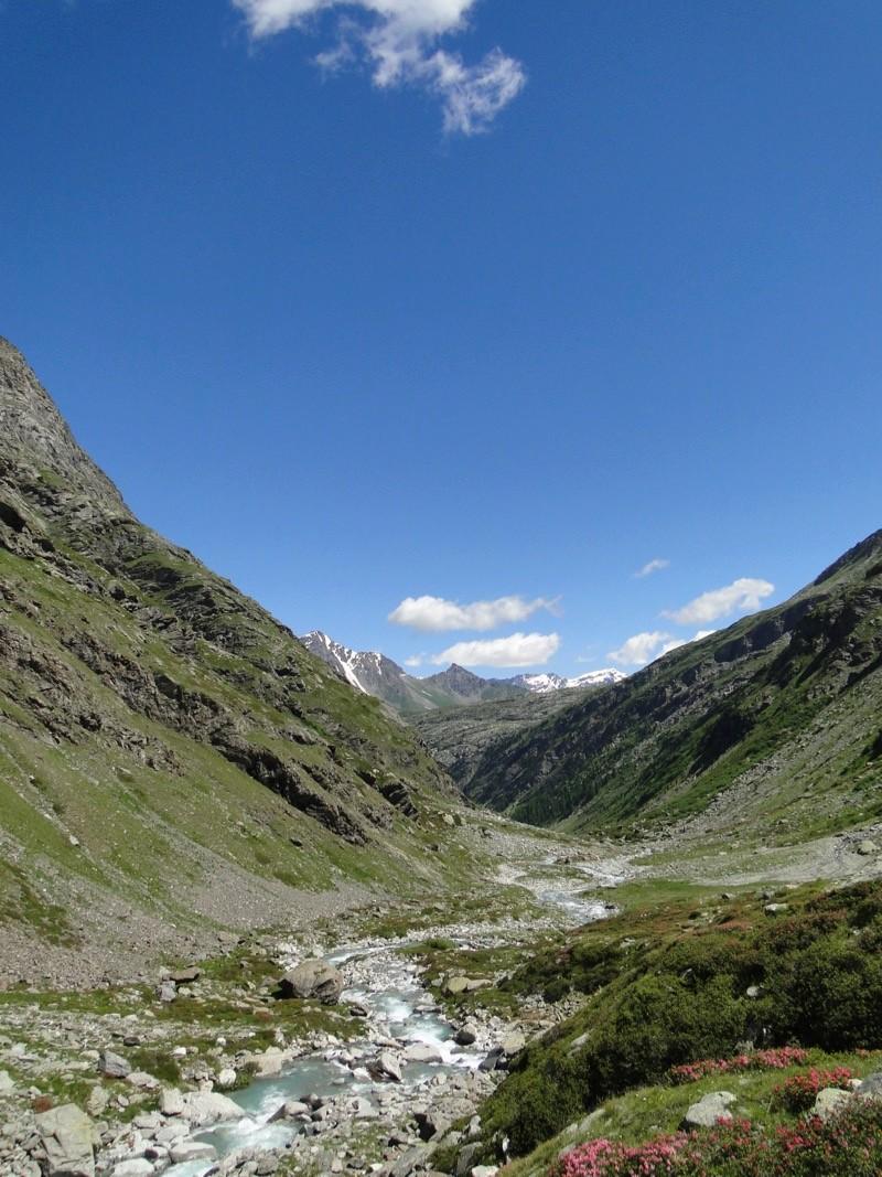 Le vallon d'Ambin Dsc04513