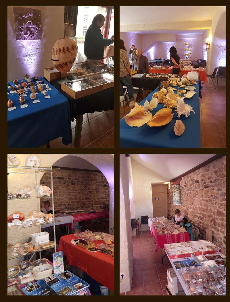 Bourse dans le château de Peufeilhoux à Vallon en Sully (03)- Les 13/14 Mai 2017 - Page 2 Divers10