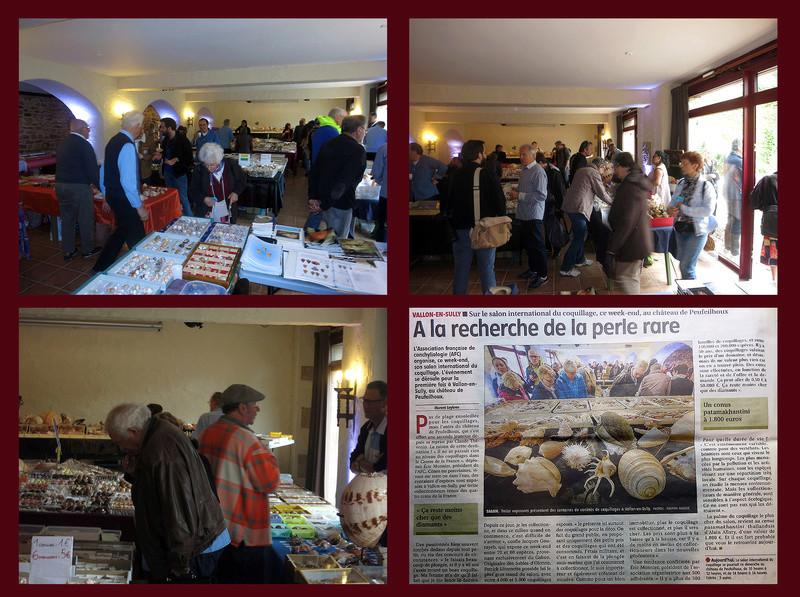 Bourse dans le château de Peufeilhoux à Vallon en Sully (03)- Les 13/14 Mai 2017 - Page 2 La_bou11