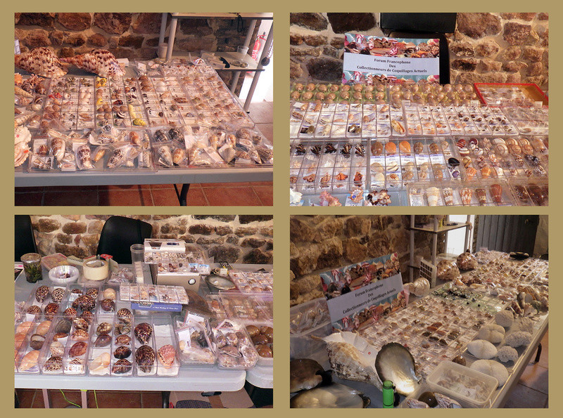 Bourse dans le château de Peufeilhoux à Vallon en Sully (03)- Les 13/14 Mai 2017 - Page 2 Mon_st10