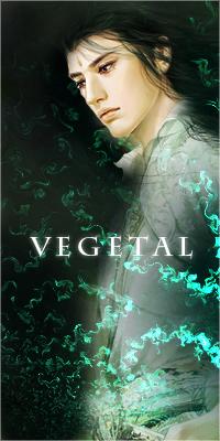 Epreuve 6 : la logique de l'Esprit Végétal [TERMINE] Vegeta10
