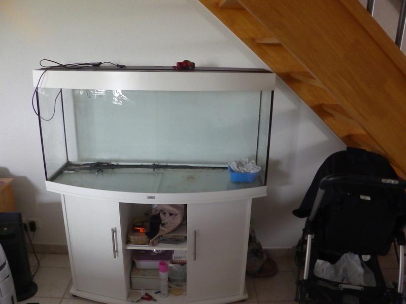 aquarium juwel 260 litres Imga0310