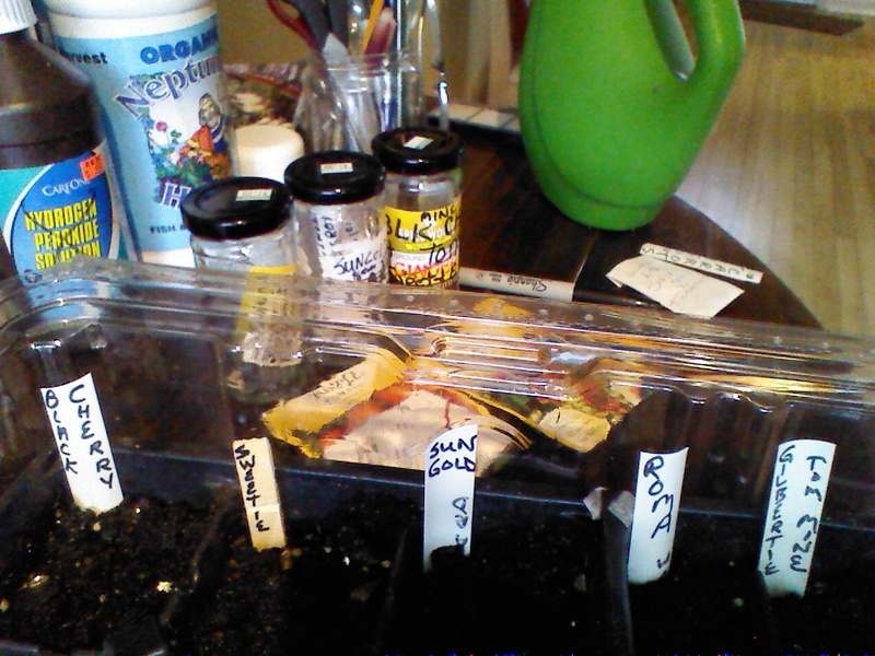 New England April 2017 Img_2098