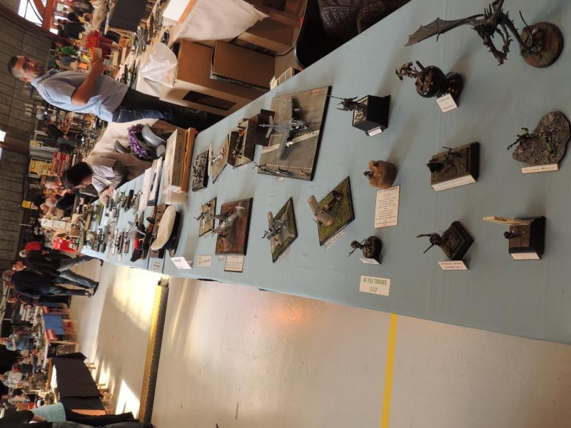Le XIe salon de la maquette palavas 2014 Dscn1822