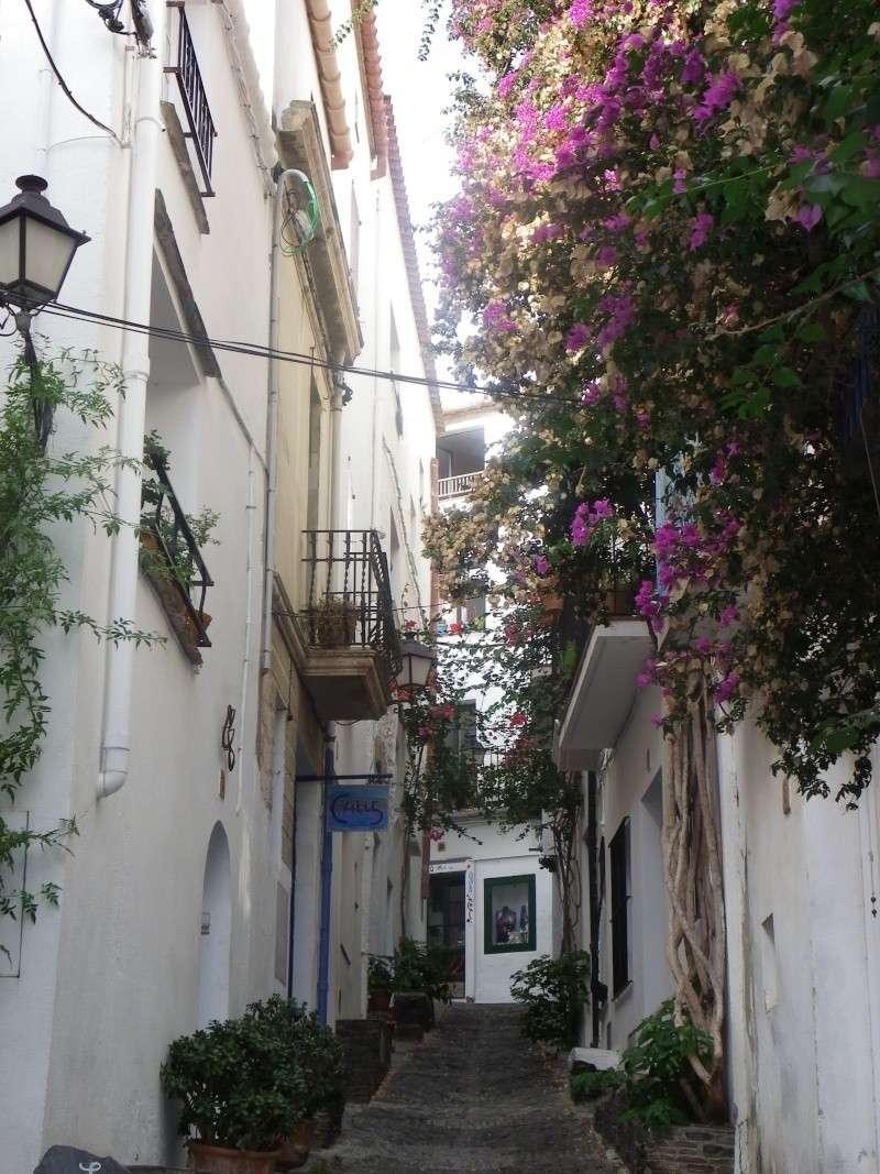 Le petit tour de Catalogne Imgp1840