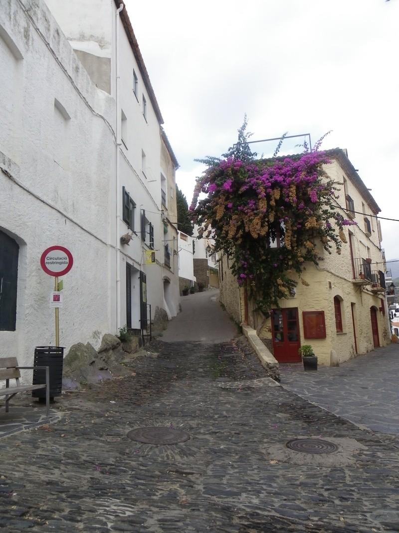 Le petit tour de Catalogne Imgp1844