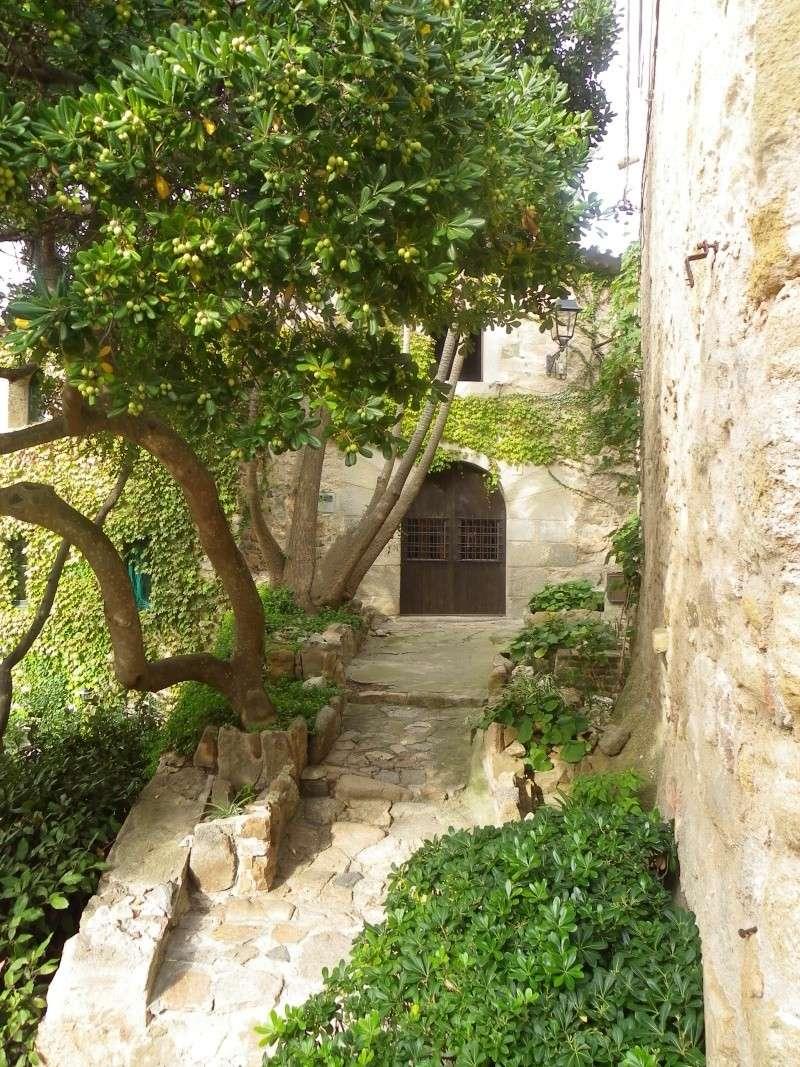 Le petit tour de Catalogne Imgp1935