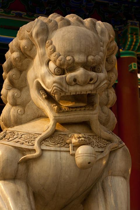 Yi-King et arts martiaux : Les animaux du Bagua Asian-10