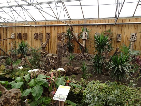 Orchideeën Hoeve - pépinière et jardin d'orchidées A15nid10
