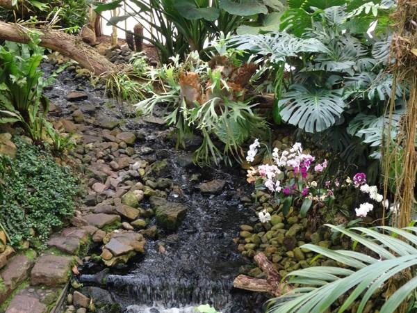 Orchideeën Hoeve - pépinière et jardin d'orchidées A910