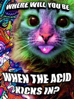 """""""Cabal Ultimatum In Full Force Now"""" - One Who Knows/Richard Lee McKim, Jr. aka Swervy McGee   6/13/17 Acid_c11"""