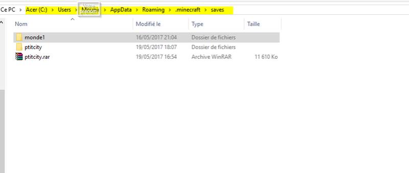 Exporter votre map vers Minecraft 2017-011