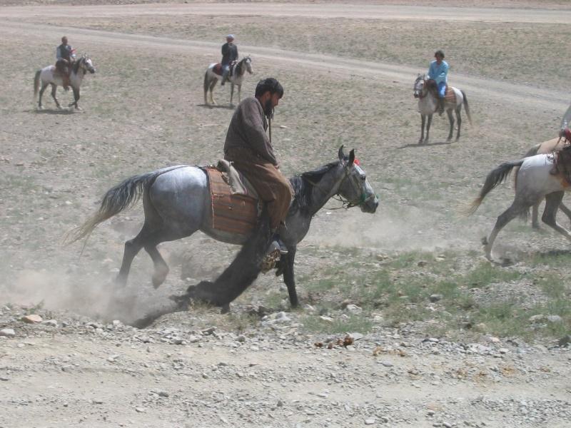 Scenery view of Afganistan Buzkas10