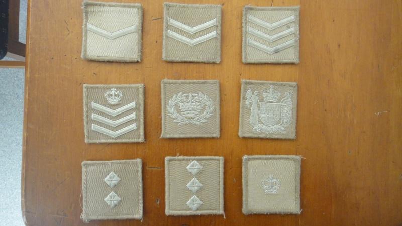 Brassards ,Rank slides and badges - Page 2 Dsc09011