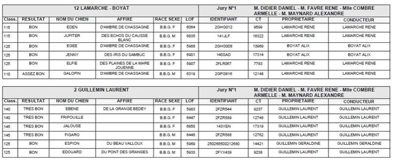 Les bbg en brevets saison 2016/2017 Lievre12