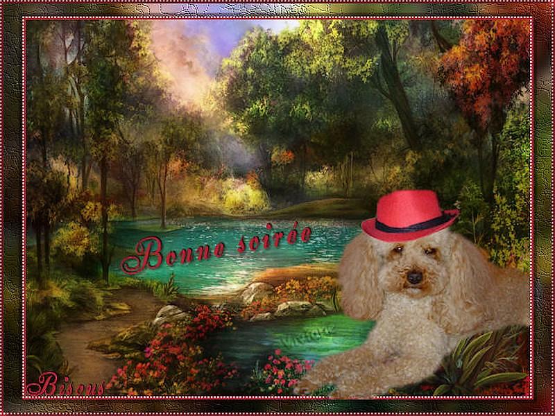 LES BONJOURS Bonne_11