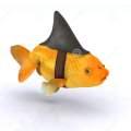 Le squal