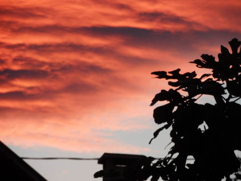 lever de soleil 00310