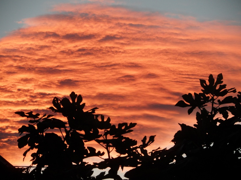lever de soleil 00410