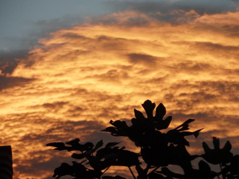 lever de soleil 00510
