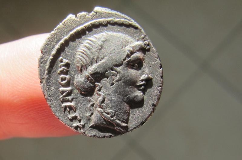 C.C. Caldus et autres Img_3614