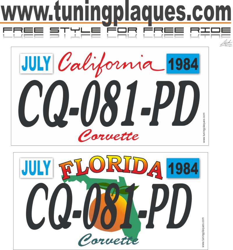 plaques immatriculation look US Cq-08110