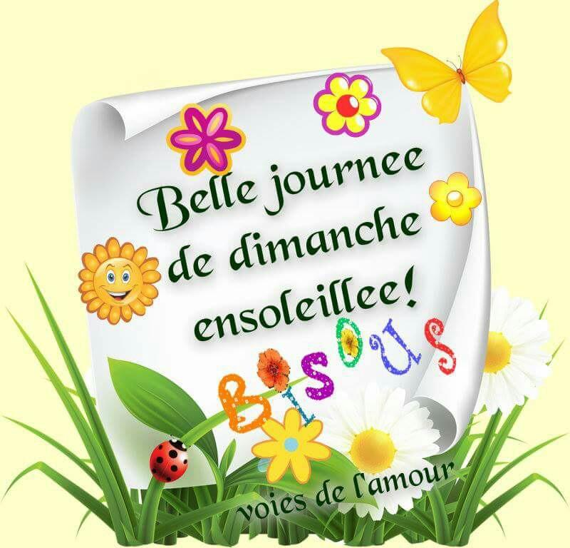 Bonjour - bonsoir - Page 6 0b1cca10