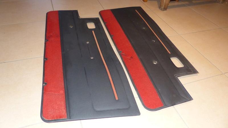[VDS] Panneau de porte 205 GTI PH1 P1070219