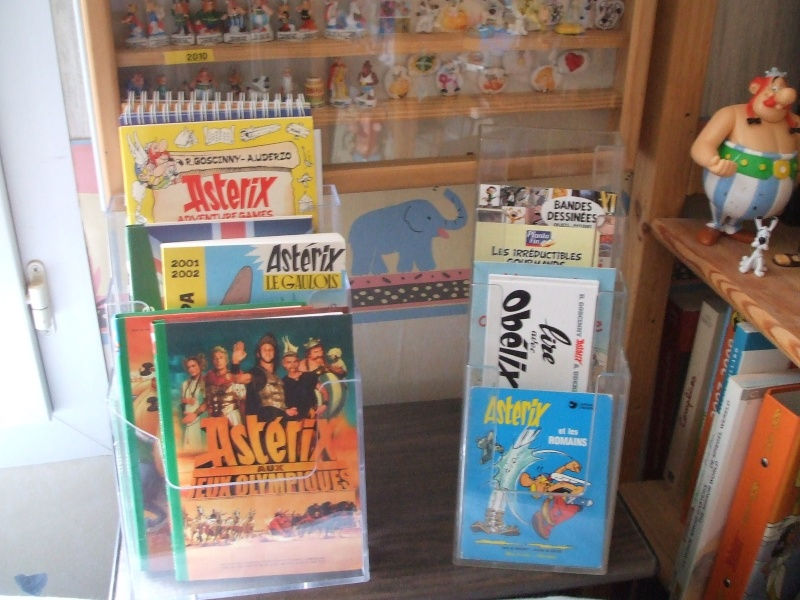 MA COLLECTION SUR LE MONDE D'ASTERIX - Page 5 Dscf3553