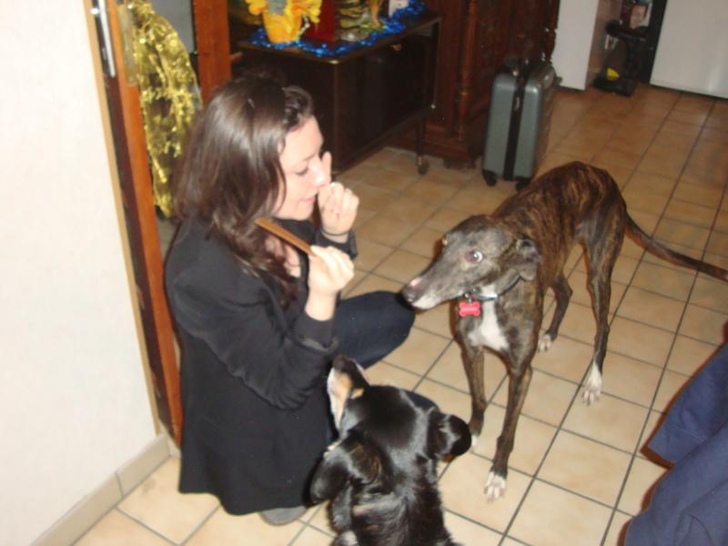 Galga Chispa residencia Cobie SCOOBY FRANCE ADOPTEE - Page 5 Dsc04044